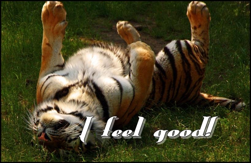I-Feel-Good